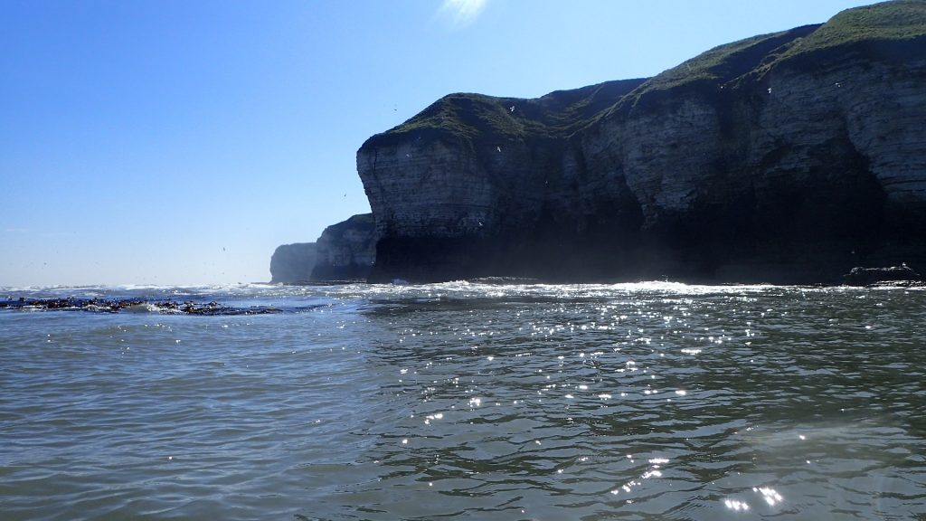 Flamborough Cliffs from North Landing