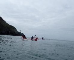 South Stack and group