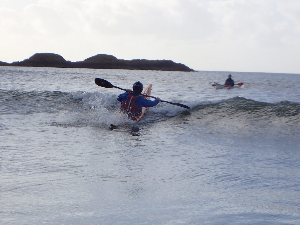 "Curly back surfing (aka ""taking it from behind"") – Some say he enjoys it!"