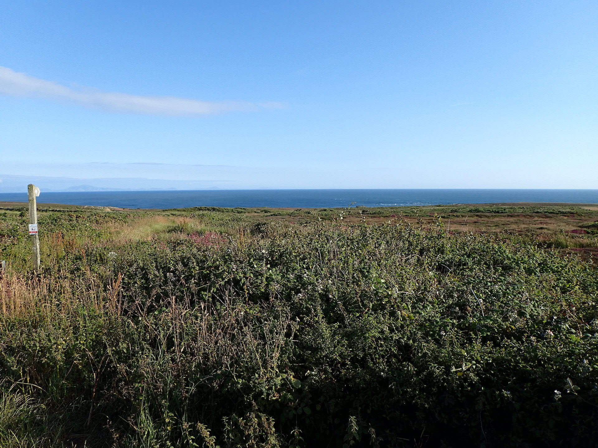 2019-07-13 PM in the AM followed by LCC to Rhoscolyn and back